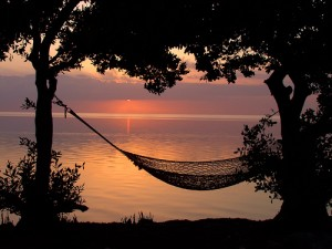 A hammock in the sunset